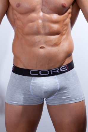 Boxer_Short_CORE_Grey_front